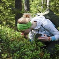 Paljasjalkapatikkaan kuuluu erilaisia aistiharjoituksia. Opas Marleena Turunen tutkii eräässä niistä metsän tuoksuja.