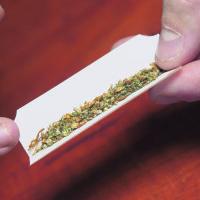 Kannabis – uhka vai mahdollisuus?