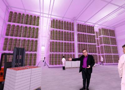 Amirlatifin ideana on, että kasvit kasvatetaan pystymallisissa sylintereissä. Sylinteriyksiköitä voidaan kasata toistensa päälle. (Havainnekuva: Evergreen Farm Oy)