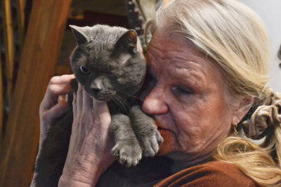 Eläintensuojelu, Raili Lyttinen, kissa
