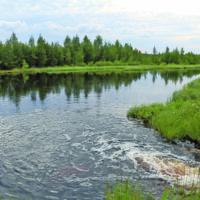 Hallinto-oikeus hylkäsi Talasnevan turvetuotannon ympäristöluvasta tehdyt valitukset