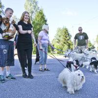 Saadaanko koirapuisto vihdoin Ylöjärvelle?