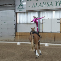 Vikellyksessä tanssahdellaan  hevosen tahtiin