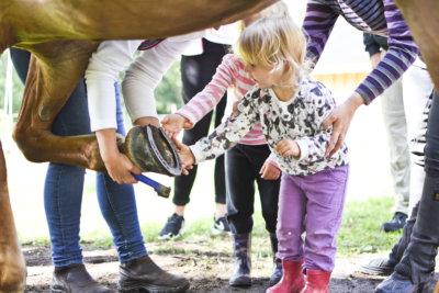 Olivia Hangasmaa katseli, kun Pluusin kavioita putsattiin. Lapsille opetettiin, mitkö kohdat kaviossa ovat arkoja.