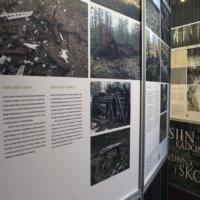 Metsien kätkemä historia