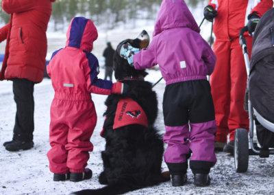 berninpaimenkoira, Teivon ravikeskus, eläinten joulusiunaus, joulu, Koirakeskus Eläinavustaja