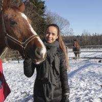Hevostytön tarina jatkuu
