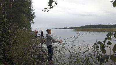leirikoulu, Sari Kaasinen, perinnesoittimet