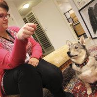 Kurun kirjastossa vietetään kymmenenvuotisjuhlia! Juhlaviikolla kirjastossa rapsutellaan Typy-koiraa ja katsotaan nukketeatteria
