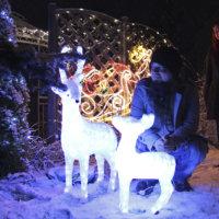 Kiusoittelu kasvoi jouluvaloövereiksi