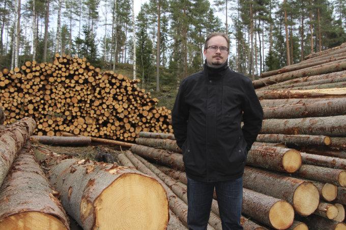 Haavisto hakkuut, hakkuu, Mirko Harjula, kuva: Iiria Lehtinen