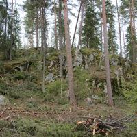 Räjäytys- ja metsätöitä Haaviston kuntoradan läheisyydessä