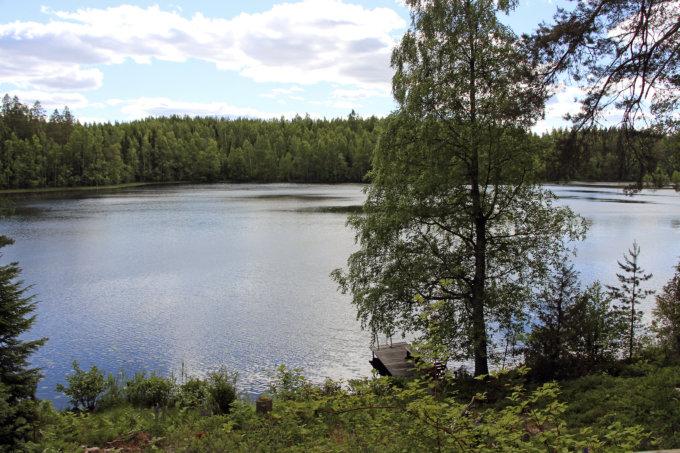 Leila Savontaus, Harri Savontaus, Koijärvi, mökki, kuva: Iiria Lehtinen