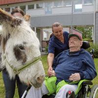 Kot, kot – eläinvieraat ilahduttivat vanhuksia