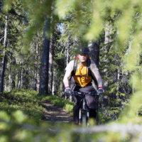 Metsä on seikkailu aikuisellekin