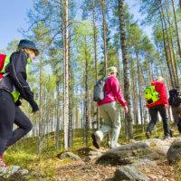 Seitsemisen kansallispuiston käynnit lisääntyivät viime vuonna kolmasosalla