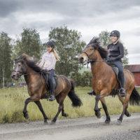 Vahantalaisnelikko edustaa Suomea kansainvälisellä issikkaleirillä