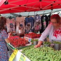 Myös maaseudun yritykset voivat saada koronarahoitusta – tukea myönnetään esimerkiksi yritykselle, joka myy vihanneksia tai lihavalmisteita