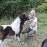 Veera Ahlgrén: Yhteydenotto Joulupukin online-chattiin 2019