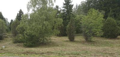 niittotalkoot, kuva: Ylöjärven omakotiyhdistys