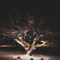 Leijan ja Kirkkotanhuantien leikkikentän välisellä alueella sijaitseva puu on valaistu kauniisti.