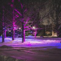 Iltalenkki valotaidereitillä onnistuu vielä tänään ja huomenna – Loiste Ylöjärvi -valotaidefestivaali tarjoaa upean valoelämyksen pimeyden keskelle