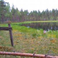 Ylöjärvi Retkelle -kartta auttaa löytämään erilaisia luontokohteita – karttaan on merkitty myös yöpymis- ja melomiskohteita