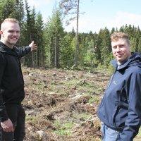 Metsän omistaminen ei ole pörssipeliä – Metsätiloja ostavat tavalliset ihmiset
