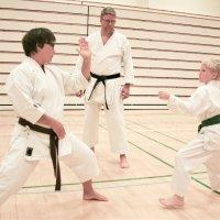 Ylöjärven Shotokan on karaten pieni suurseura – määrätietoinen työ näkyy jo kansainvälisestikin