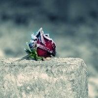 Onko  hautakivikauppiailla tulevaisuutta? – Suomalainen hautauskulttuuri on myllerryksessä