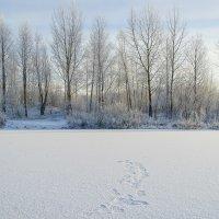 Jäät ovat vielä todella heikkoja, muistuttaa Pirkanmaan Pelastuslaitos – Tiedätkö miten toimia, jos jää pettää?