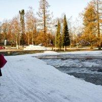 Räikän hiihtoladulle ei ole enää asiaa – lumen tykitys edellyttää pakkasta