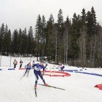 Tino Stenman hurjasteli SM-sprintissä välieriin – Krista Manniselle voitto Kaupissa ja Aapo Haatajalle vapaan kisan voitto Rautavaaralla