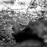 Kurun Luoteentiellä avopuolisonsa murhannut nainen sai elinkautisen vankeusrangaistuksen – Puukotti uhria yli 20 kertaa eri puolille kehoa