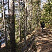 Paikalla ollut paloesimies Jarmo Järvinen kertoo, miksi Pikku-Ahveniston laavun tulipalo ei ole voinut lähteä liikkeelle nuotiosta
