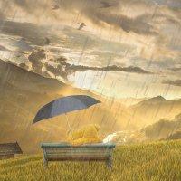 """""""Hän oli merkinnyt kesälomansa jokaisen päivän kohdalle huolellisesti s-kirjaimen merkiksi siitä, että sinä päivänä oli satanut"""""""