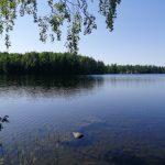 Kaipaako lähijärvesi kunnostustoimia? Vesiensuojelua tukeva ohjelma tarjoaa rahoitusta yhdistyksille, yrityksille ja kunnille