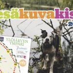 Ylöjärven Uutisten kesäkuvakisa tulee taas – Osallistu kisaan ja voita upeita palkintoja!