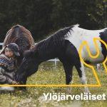 Minna Tihinen teki 30 vuoden kansainvälisen uran Nokian Renkailla, kunnes kyllästyi – Uusi kutsumus löytyi hevosista ja viittomakielestä