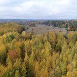 Lukupaketti: Finlandia-ehdokas, suurimmat yhteisöveromaksajat, suosittu kannabis…