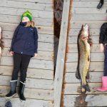 """Sisarukset Milla ja Sara Manninen kiskoivat viikonloppuna mökkijärvestään jättimäisen mörköhauen: """"Aika huuli pyöreänä siinä oltiin, että mikä krokotiili tää on"""""""
