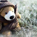 Elä kuin viimeistä talvipäivää: Jos minulla olisi vielä enemmän villaa päällä kuin näillä pakkasilla on, olisin lammas.