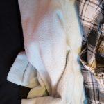 Pirkanmaan Jätehuolto: Poistotekstiiliä kerätään kahdessa paikassa Pirkanmaalla