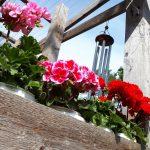 Avoimet puutarhat ilahduttavat taas sunnuntaina – katso tästä Ylöjärven vierailukohteet
