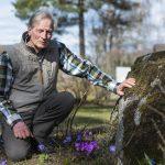 Astu sisään Sillanpään torpan pihapiiriin – Ulla ja Raimo Lepistön piha on täynnä toinen toistaan upeampia kukkia