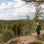 Yksityiset omistavat kolme neljäsosaa Suomen metsistä, mutta metsän omistaa ei tunnista mistään